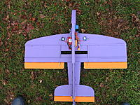 Name: IMG_0077.jpg