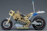 Name: duc5.jpg