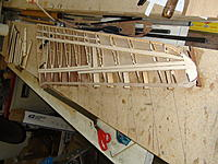 Name: DSC02923.jpg