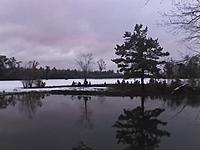 Name: snow over pond.jpg