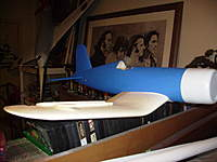 Name: IMGP0422.jpg