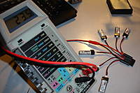 Name: DSC06975.jpg
