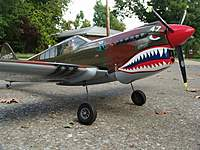 Name: P-40010 (Large).jpg
