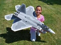 Name: Blitz F-22 4.jpg