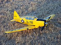 Name: Airfield 800mm AT-6 013.jpg