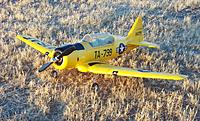 Name: Airfield 800mm AT-6 018.jpg
