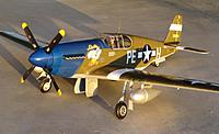 Name: 16 Feb 2013 055.jpg