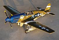 Name: 16 Feb 2013 059.jpg