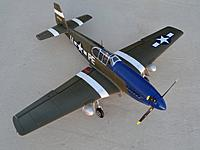 Name: 16 Feb 2013 074.jpg
