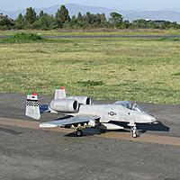 Name: IMG_3539.jpg