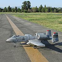 Name: IMG_3548.jpg