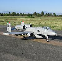 Name: IMG_3553.jpg
