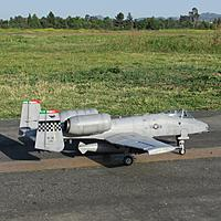 Name: IMG_3557.jpg