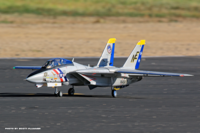 Name: freewing F-14 Tomcat Prado Air Park 10-24-15.png