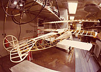 Name: Triplane in bones.jpg