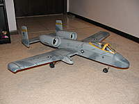 Name: GWSA10Warthog1.jpg