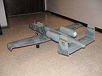 Name: GWSA10Warthog3.jpg