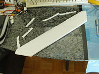 Name: 04_Main Wing With The Cut Leading Endge.jpg