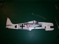 Name: P1160625.jpg