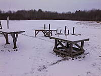Name: 20 Deg and show (2).jpg