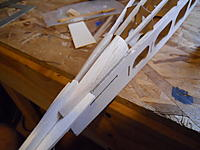 Name: DSCN0152.jpg