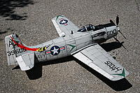 Name: Skyraider  (19).jpg