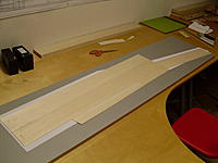 Name: SDC17679.jpg
