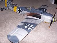 Name: PKZ FW190 side.jpg