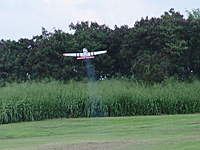 Name: p51-3.jpg