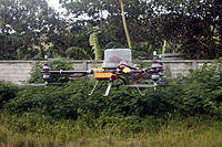Name: y6_3.jpg