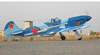 Name: YAK9 (1).jpg