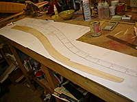 Name: DSC04707.jpg