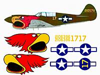 Name: p-40_parrothead.jpg