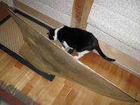 Name: EC12.jpg