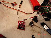 Name: DSC00436.jpg