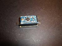 Name: DSC00455.jpg