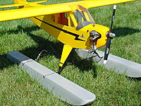 Name: 60 Cub Floats 6.jpg