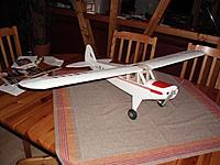 Name: piper 02.JPG