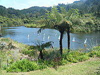Name: Waihi Beach 002.jpg
