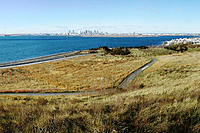 Name: deerisland.jpg