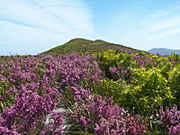 Name: 100_1213.jpg