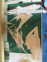 Name: IMG_9018.jpg