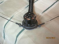 Name: IMG_3558.JPG