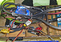 Name: fryed hydra 120 2 weeks old.jpg