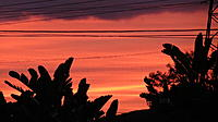 Name: Sunset North Hollywood CA 1-28-13 (4).jpg