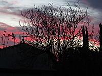 Name: HDV 3-28-15 026.jpg Views: 6 Size: 758.0 KB Description: Gooood Morning!!!