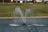 Name: IMG_5040.jpg
