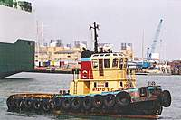 Name: wyeforcecp1.jpg