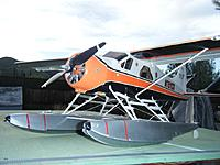 Name: DSCF2349.JPG