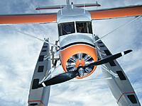 Name: DSCF2360.JPG